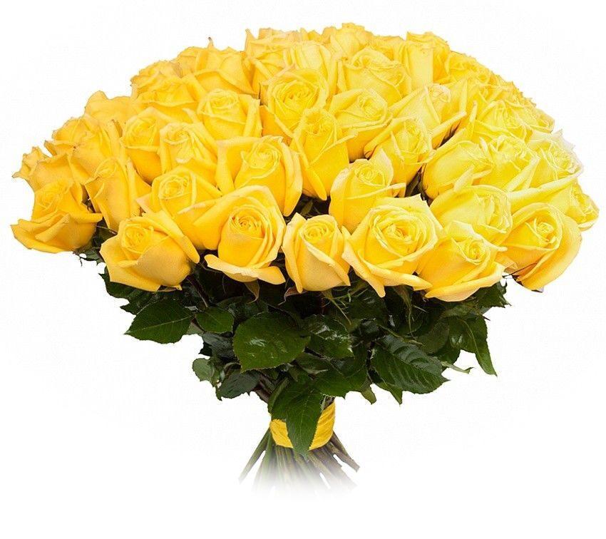 Какое наибольшее число букетов можно составить из 40 белых и 60 желтых роз, роза екатеринбург цветы